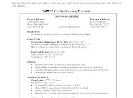Writing Objective For Resume Mesmerizing Objectives To Write In Resume Example Format Resume Template