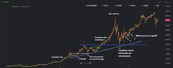 Bitcoin Gold Usd Chart Charts Of The Day Gold Vs Bitcoin The Hedgeless Horseman