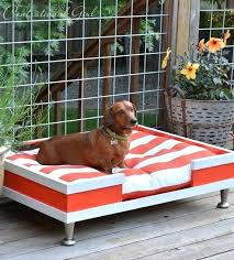 outdoor dog bed with canopy best beds images on raised