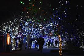 Lv Zoo Lights Lehigh Valley Zoo Christmas Lights 2019 Conyngham Valley