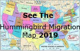 2017 Hummingbird Migration Chart Hummingbird Migration Spring 2019 Migration Map For Spring