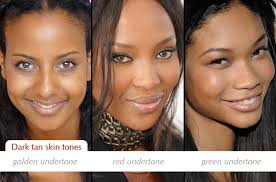 Brown Skin Tone Chart Make Up Charts Determining Dark Skin Tones And Undertones
