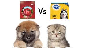 Pedigree Vs Purina One 2019 Most Paw Sitive Pet Food