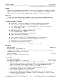 Example Web Developer Resume For Result Oriented Web Applications