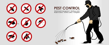 pest control wichita ks. Unique Control 24 Hour Pest Control Wichita KS On Ks P