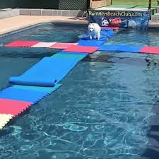 Design Your Own Pool Float 5 Diy Pool Floaties Your Dog Will Love Family Handyman