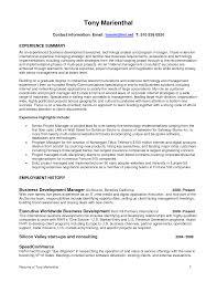 Higher Education Resume Waiter Resume Examples For Letters Job