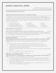 Adjunct Professor Resumes Adjunct Professor Resume Sample Preschool Teacher Skillse