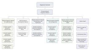 organization chart thumbnail