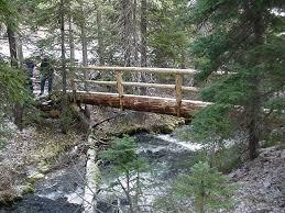bend ft rock forest service trail crews build a log bridge over spring creek