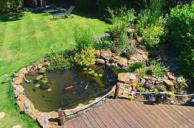 pond cleaning services northampton