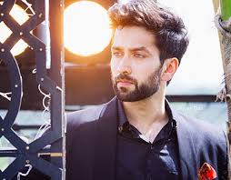 Image result for nakuul mehta wife