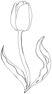 Small Picture Printable Tulip Coloring Pages Coloring Me