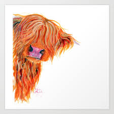 scottish highland cow kaboo by shirley macarthur art print by shirleymac society6
