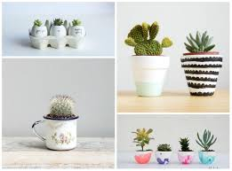... Succulent Potting Ideas Living Loving For All Things Lovely Sukulen  Bisa Jadi Salah Satu Pilihan Tanaman