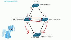 Designated Port Vs Root Port Stp Designated Ports