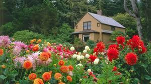 free flower garden wallpapers.  Garden Flower Garden Wallpaper Free Download Intended Wallpapers A