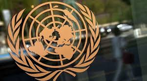 united nations global citizen essay contest globcal  minsk 7 news the united nations has launched the fourth edition of the many languages one world student essay contest belta learned