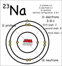 diagram of na wiring diagram libraries diagram of na 23 wiring diagrams bestsodium 23 stupid school project atom model atom