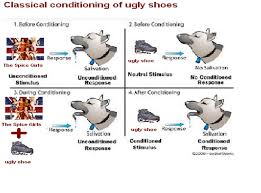 Example Of Classical Conditioning 22 January 2010 Gerds Consumer Behavior Blog
