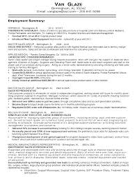 Amazing It Sales Resume Writer Images Resume Template Samples