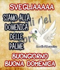 15) Immagini e Frasi di Domenica Delle Palme da scaricare Gratis -  BelleImmagini.it