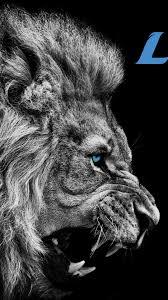 iphone 7 plus detroit lions wallpaper