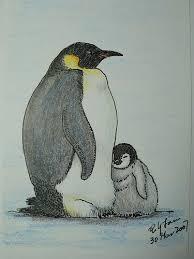 penguin drawings in pencil. Wonderful Pencil Emperor Penguin Color Pencil Drawing For Drawings In Pencil