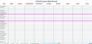 Log Templates Excel Adorable Workout Log Spreadsheet Workout Tracker Spreadsheet Fresh Log