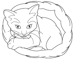 Small Picture Kitten Coloring Pages Printable Coloring Home