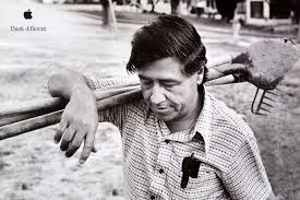 happy cesar chavez day a day of service the cherie bomb cesar chavez day