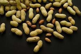 A nutty weapon to fight peanut allergy - Los Angeles Times