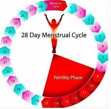 Pregnancy Safe Period Chart Bedowntowndaytona Com