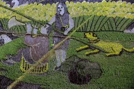 chinese rice field. Interesting Rice China Rice Paddy Art For Chinese Rice Field