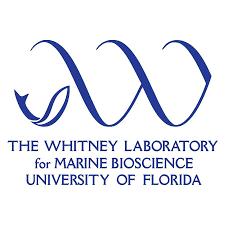 Resultado de imagem para university of florida whitney lab