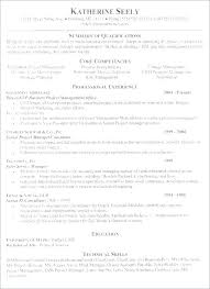 business policy example company car policy template sample corporate travel monister