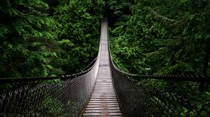 wallpaper wiki bridge in the forest hd backgrounds for mobile and pc free images pic wpc003927 by billion photos