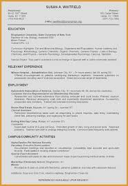 Resume Examples For Students Best Of 16 Beautiful It Specialist