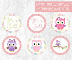 Free Printable Cute Owl Cup Cake ToppersBaby Shower Owl Cake Toppers