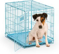 midwest icrate single door dog crate blue in  chewycom