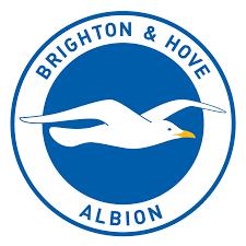 Image result for BRIGHTON logo