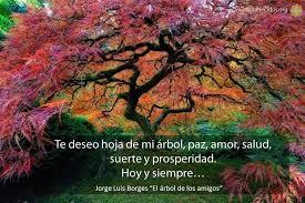 El árbol de Violetta. Images?q=tbn:ANd9GcSOEt41s3GlzoNADvgHiMVONAsCa6gr65sgqg&usqp=CAU