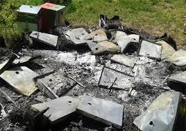 Αποτέλεσμα εικόνας για Καηκαν μελισσια απο πυρκαγια