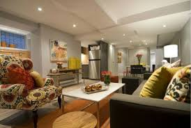 Basement Apartment Design Ideas Style Interesting Inspiration Ideas
