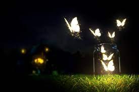 Glowing butterflies lighting in the ...