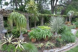 Small Picture Cactus Garden Design Ideas How To Make Cactus Garden Ideas Luxury