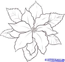 704 x 1024 file type click the download button to see the full image of poinsettia coloring sheet printable, and download it in your computer. Poinsettia Colouring Pages Page 2 Coloring Home