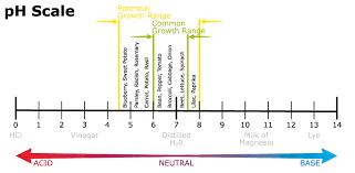 Vegetable Ph Chart Understanding Ph In The Vegetable Garden B L Botanica