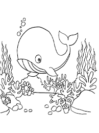 Coloring books for boys and girls of all ages. Printable Whale Under The Sea Coloring Page For Both Aldults And Kids