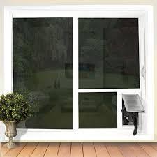 pet door solutions